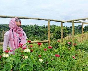 Kamu atau awan sama angkuhnya, walaupun setidaknya kita sama sama berpijak di tanah yang sama. Tapi inilah kenyataan hidup, angkat dagumu dan tetaplah berpijar, karena lemah tidak mampu menopang jiwa.  #clozettedaily #clozetteid #beautiful #flower #travelling #travelblogger #traveller #backpacker #sumbar #exploresumbar #kotogadang #sumaterabarat #westsumatera #indonesiaitukece #indonesia #hijabstyle #hijaboutfit